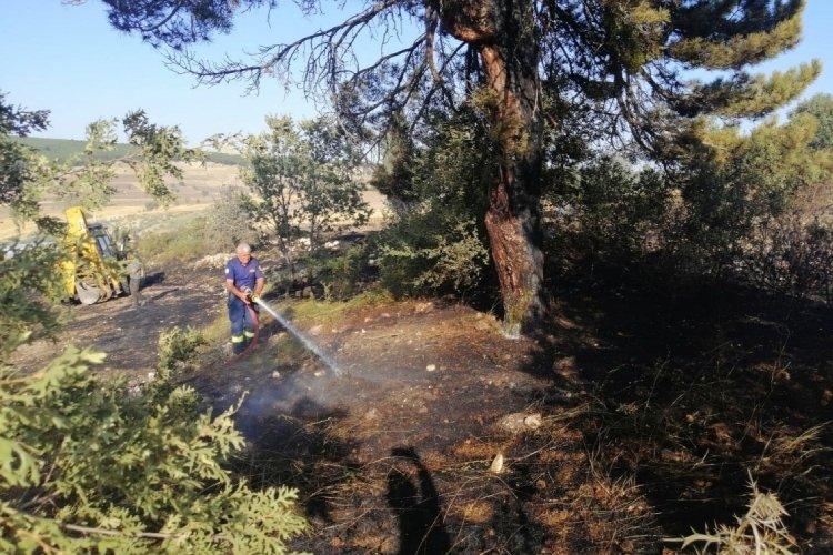 Eskişehir'de çıkan anız yangını, ormana ulaşmadan söndürüldü