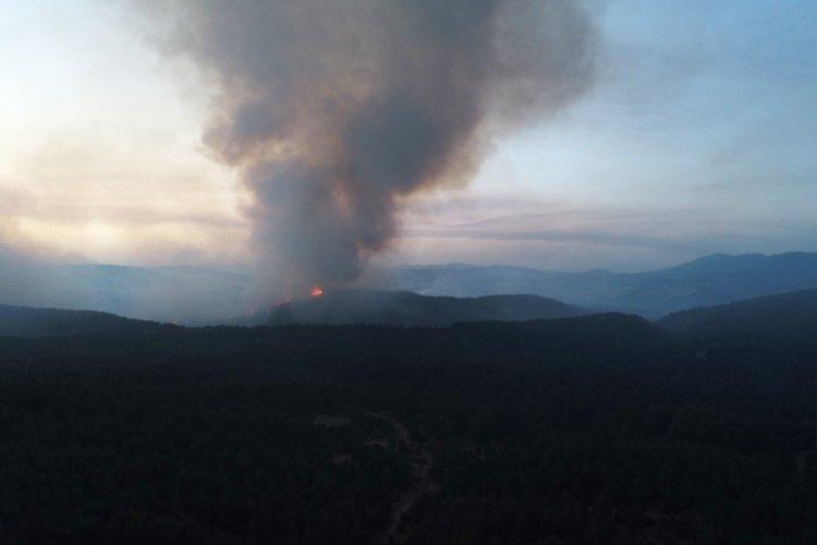 Aydın-Muğla sınırında başlayan yangına müdahale sürüyor