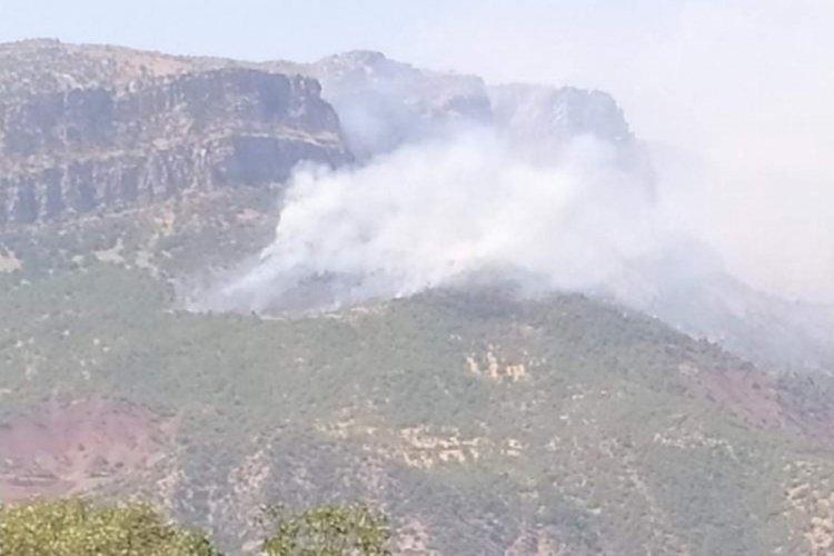 Siirt Pervari'de orman yangını!