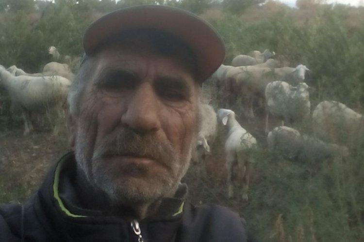 Bursa'da Kıbrıs gazisi, koyunlarını kovalarken kalp krizinden öldü