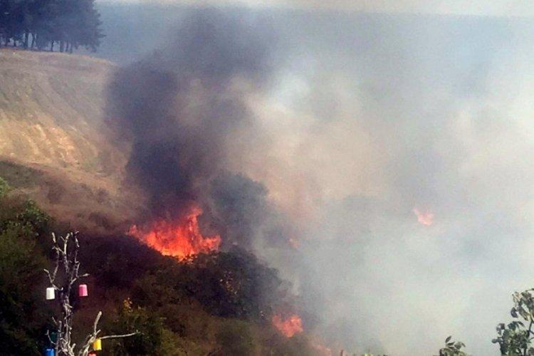 Tekirdağ'da makilik ve ağaçlık alanda yangın meydana geldi