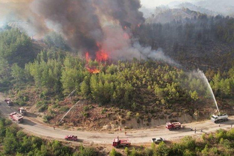 Manavgat yangınında ölü sayısı 8'e çıktı