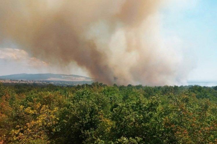 Çanakkale Gelibolu'da orman yangını
