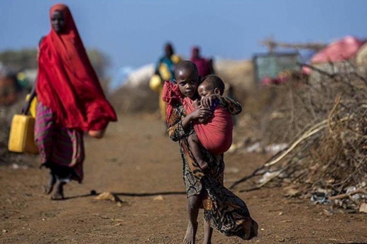 Nijerya Tarım ve Kırsal Kalkınmadan Sorumlu Devlet Bakanı Shehuri: Nijerya kıtlık riskiyle karşı karşıya