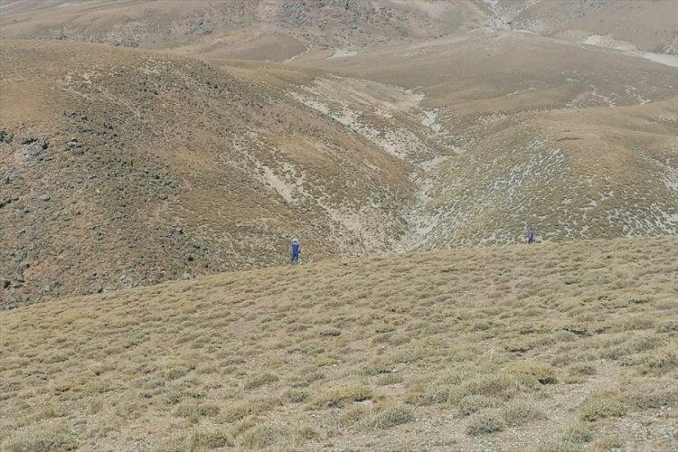 Süphan Dağı'nda kaybolan turist hala aranıyor
