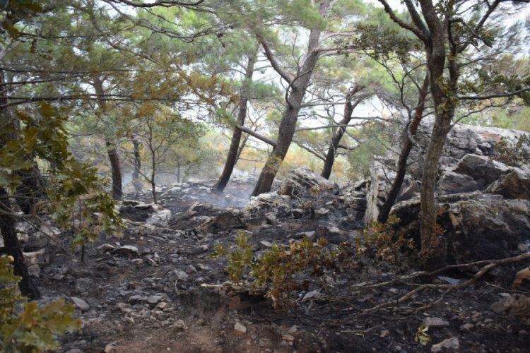 Kazdağları'ndaki orman yangınında soğutma çalışmaları sürdürülüyor