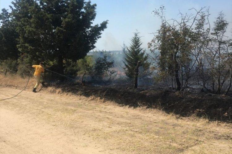 Edirne'de ormanlık alanda yangın meydana geldi