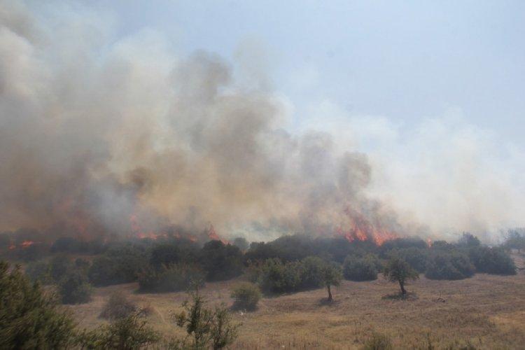 Manisa Kula'daki orman yangını kontrol altına alındı