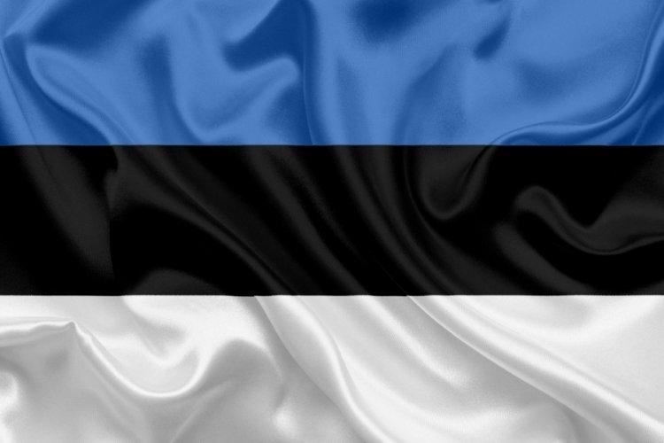 Estonya'da cumhurbaşkanlığı seçimi 'adaysız' yapılacak
