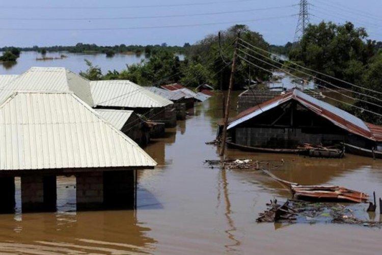 Nijerya'da sel felaketi: 20 ölü!