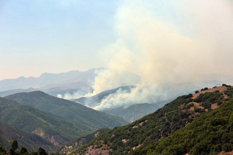 Tunceli'de yangın: Daha önce de aynı bölge yanmıştı