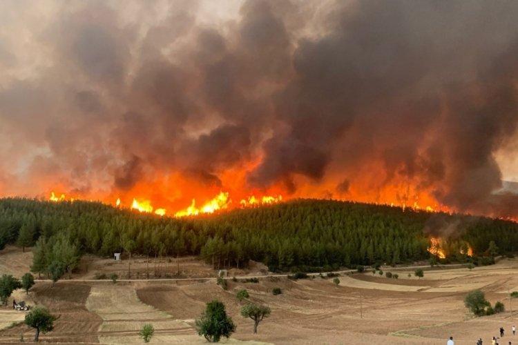 OGM: Bugün çıkan 7 orman yangınının tamamını kontrol altına aldık