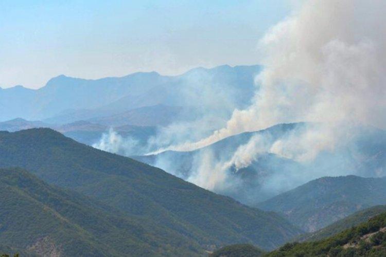 Tunceli'de çıkan örtü yangınlarının üçü söndürüldü