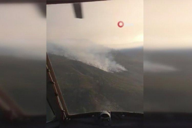 Azerbaycan'da orman yangını!