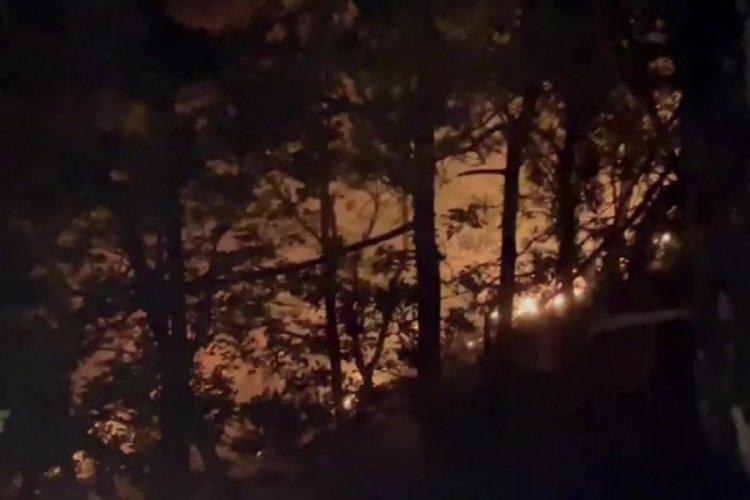 Bursa'da yıldırım düştü orman yangını çıktı