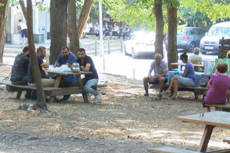 Piknikçiler Belgrad Ormanı'na akın etti