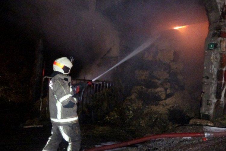 Bursa'da 6 farklı noktada ve ormana yakın samanlıkta yangın!