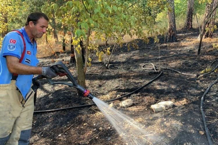 Bursa'da hızlı müdahale ormanı kül olmaktan kurtardı