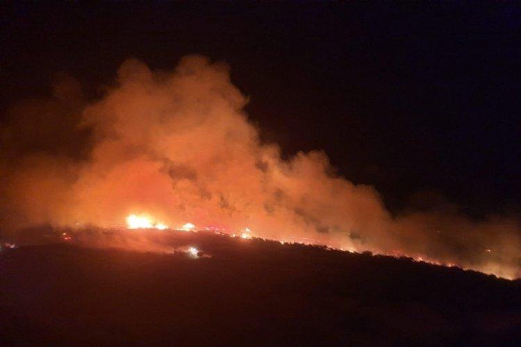 Manisa Kula'da makilik alanda yangın