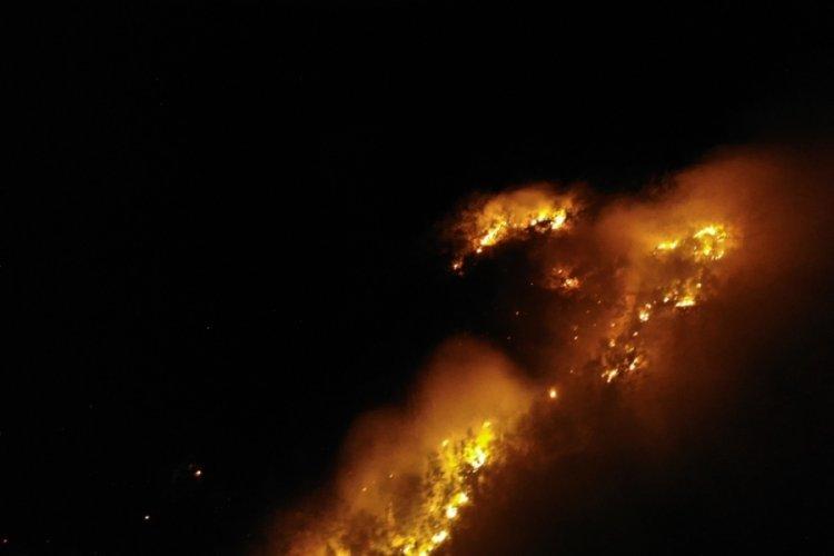 Muş Derecik'te örtü yangını