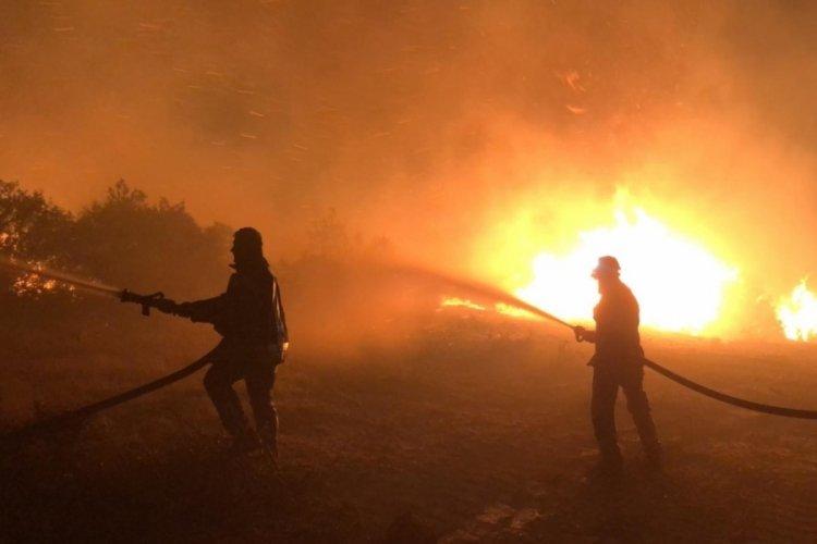 Manisa'daki orman yangını söndürüldü