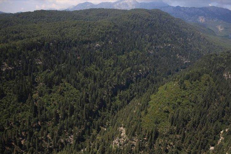 Isparta'da orman yasağı süresi uzatıldı