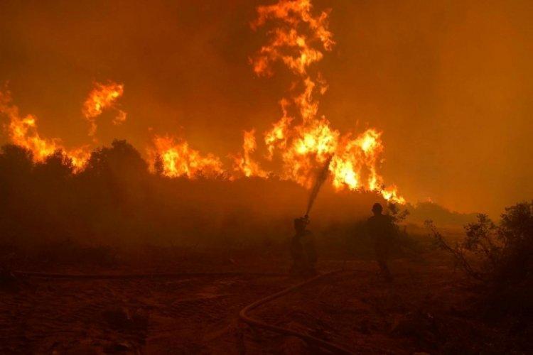 Manisa Kula'daki yangında 5 hektar alan zarar gördü