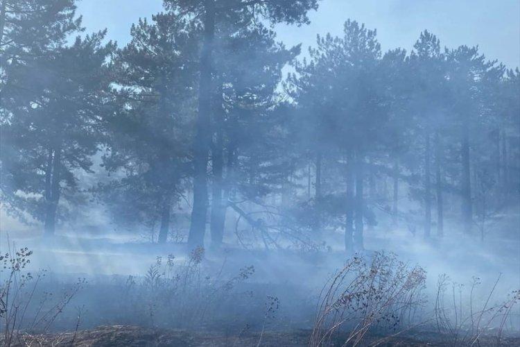 Adana'daki yangını kontrol altına alındı
