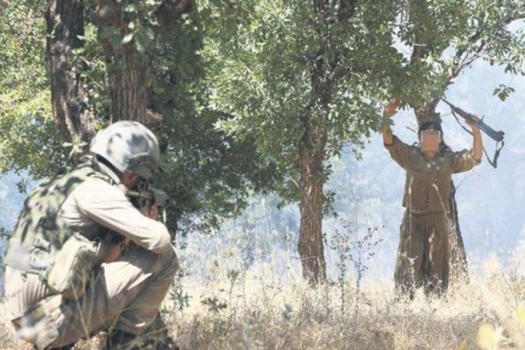 İçişleri Bakanlığı'ndan açıklama: 5 PKK'lı teslim oldu