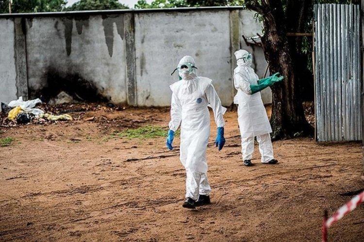 Nijer'de kolera paniği! 89 kişi hayatını kaybetti