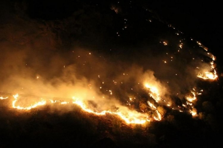 11 orman yangınının 9'u kontrol altına alındı