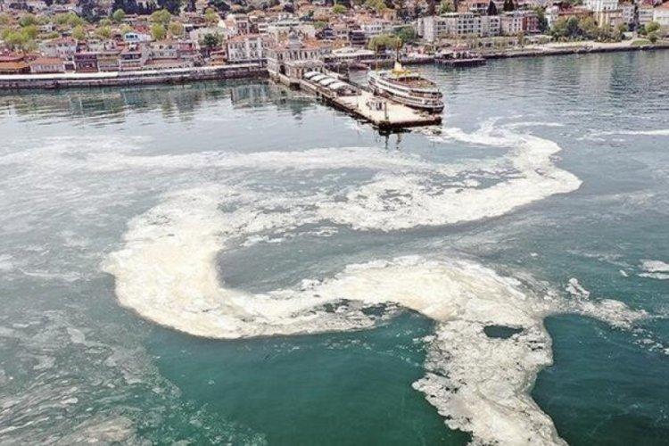 Marmara'dan balık yenir mi? Uzmanlar yanıtladı...