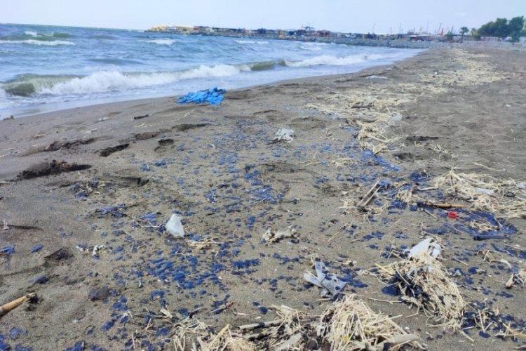 Hatay Samandağ Sahiline petrol sızıntısı vurdu