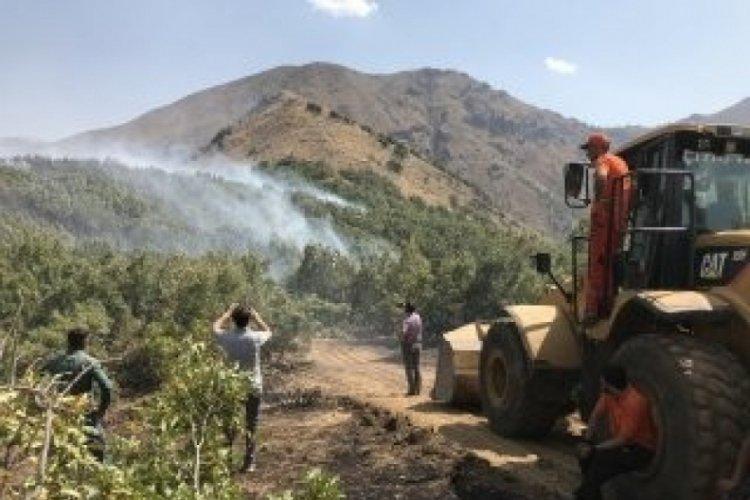 Hakkari Şemdinli'deki orman yangını kontrol altına alındı