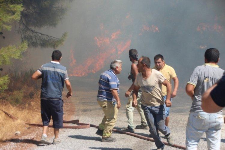 Bodrum'da çıkan yangında 13 hektar alan yandı