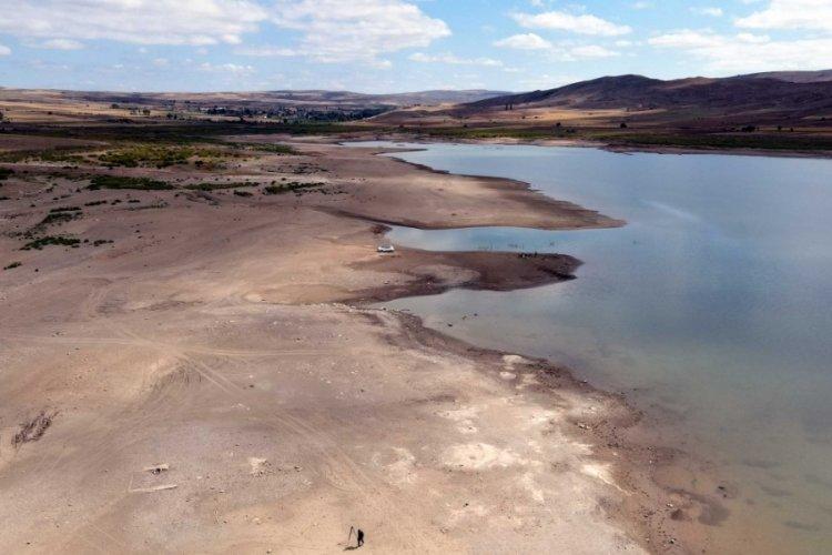 Sarıoğlan Barajı'nda su seviyesi yüzde 20'ye düştü balıklar öldü