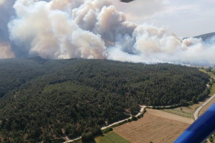 OGM: Bugün çıkan 8 orman yangınını kontrol altına aldık