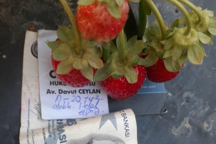 Bursa'da çiftçiyi duygulandıran not
