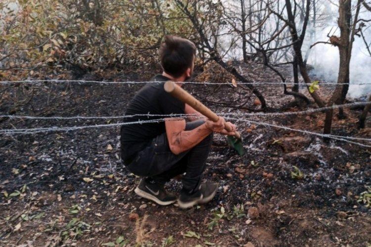 Bingöl'de ağaçlık alanda yangın