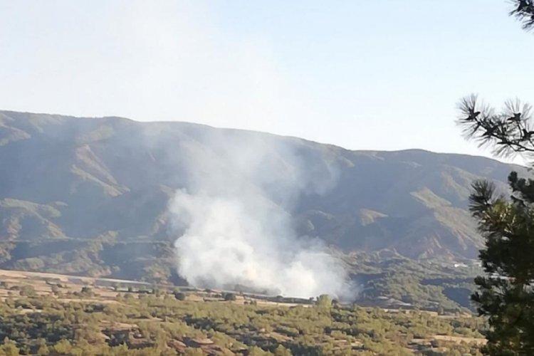 Bingöl'de çıkan orman yangını ekiplerin müdahalesiyle söndürüldü
