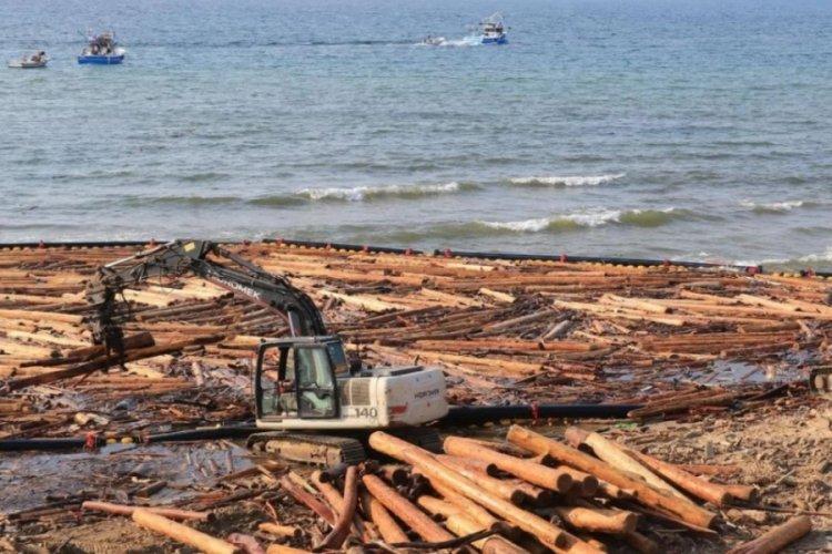 Sinop'ta selin sürüklediği tomruklar, balıkçılığı da vurdu