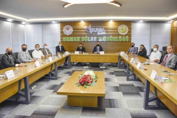 Bursa Karacabey Belediye Başkanı Özkan duyurdu! Türk Defnesi coğrafi işaret tescilini aldı
