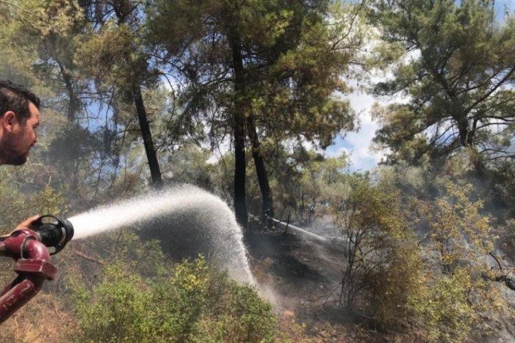 Antalya'da çıkan orman yangın kontrol altına alındı