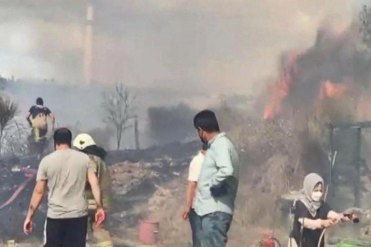 İstanbul'da otluk alandaki yangın yerleşim alanlarına yaklaşınca panik yaşandı
