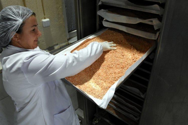 Bursa'da tarlada ürettikleri mahsulleri kendileri işleyen kadınlar taleplere yetişemiyor