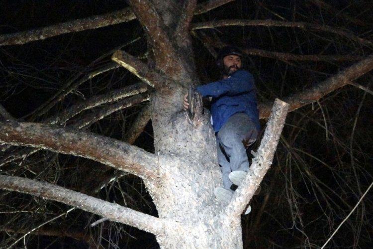 Burdur'da ağaca iniş yapan yamaç paraşütçüsünü itfaiye kurtardı