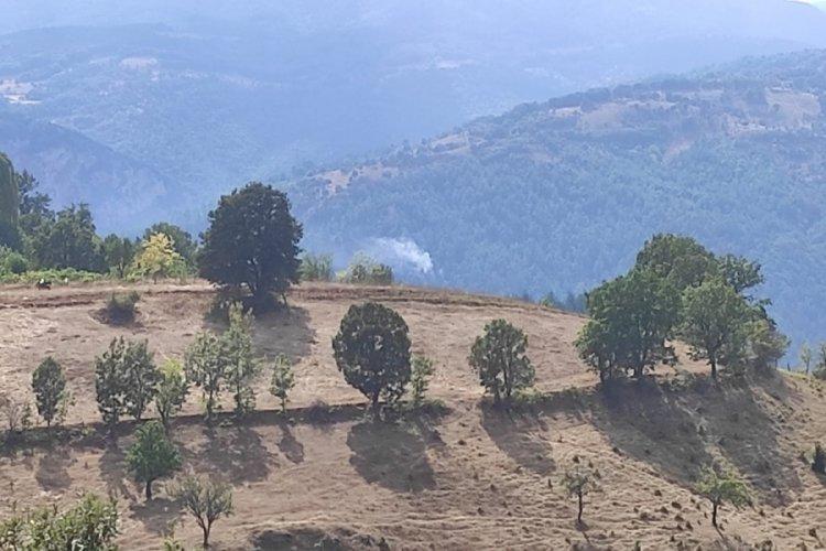 Bursa Mustafakemalpaşa'da yıldırım düştü, orman yangını çıktı
