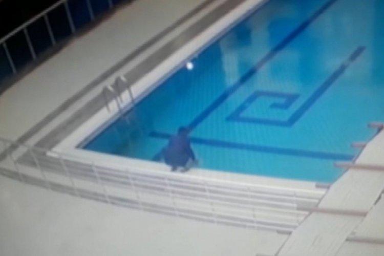 Bursa'da martı, havuzdan böyle kurtarıldı