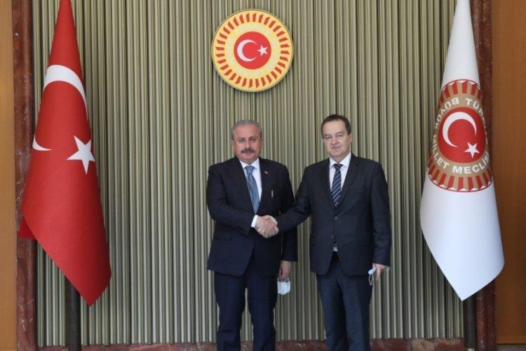 Meclis Başkanı Mustafa Şentop, Sırp mevkidaşıyla bir araya geldi