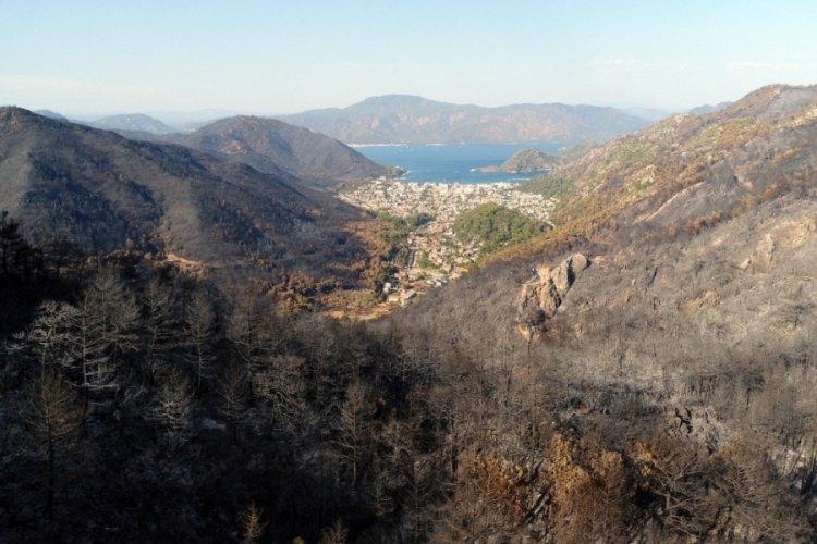 Muğla'da 15 günlük yangınlarda 52 bin hektar alan zarar gördü